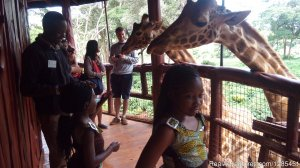 Nairobi Excursions Tours Nairobi, Kenya Sight-Seeing Tours