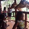 Nairobi Excursions Tours