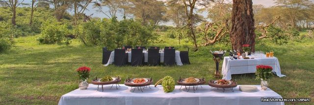 Arend Safaris Under Canvas Luxury Lunch - The Arend Safaris
