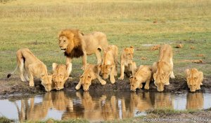 Jamboree Africa Tours and Safaris Nairobi, Kenya Sight-Seeing Tours