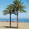 Fitness & Martial Arts Getaways Marbella