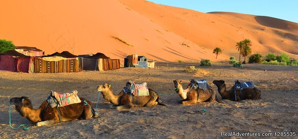 Marrakech Excursions | Image #6/13 | Morocco Sahara Holiday & Tours