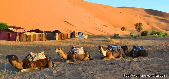 Morocco Tours & Vacations