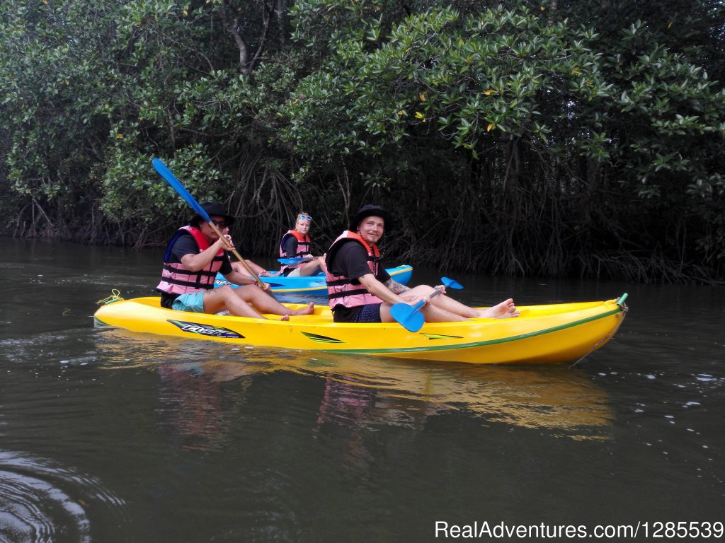 We kayak in the middle of the Thai Mangrove forest. Surrounded by nature, you will be able to relax, but we also promise an adventure you never expected!