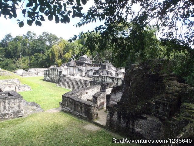 Caracol Ruins, From the Back - Yaxche Adventure Tours