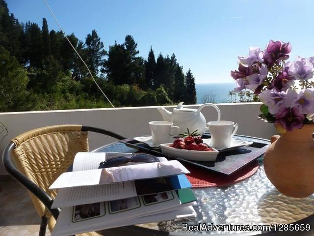 Studio Overlooking The Adriatic Sea Abbeville Alabama Vacation Als