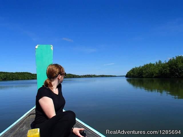 Khao Lak Mangrove Explorers - Private Excursoins