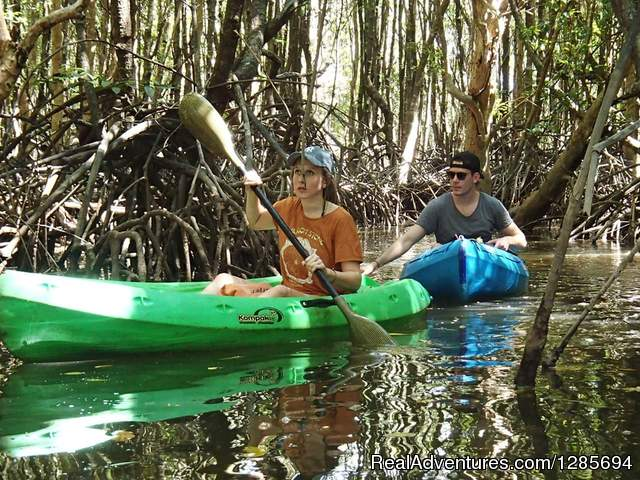 Khao Lak Mangrove Explorers - Private Excursoins