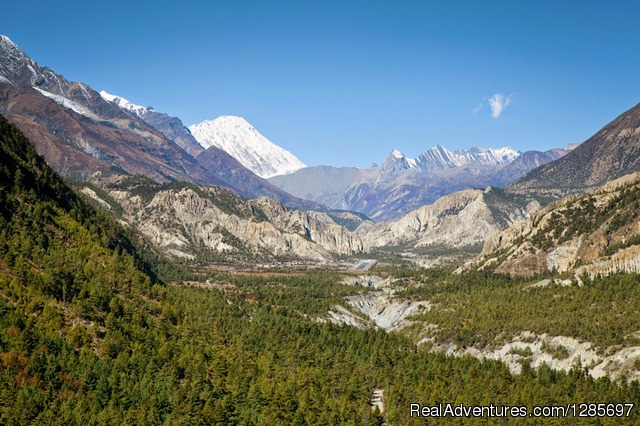 Annapurna base camp(ABC) trek