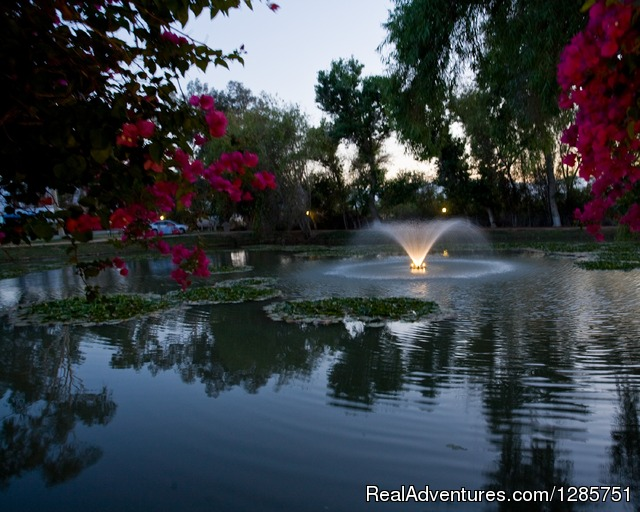 Fountain and pond at night - Shadow Hill RV Resort
