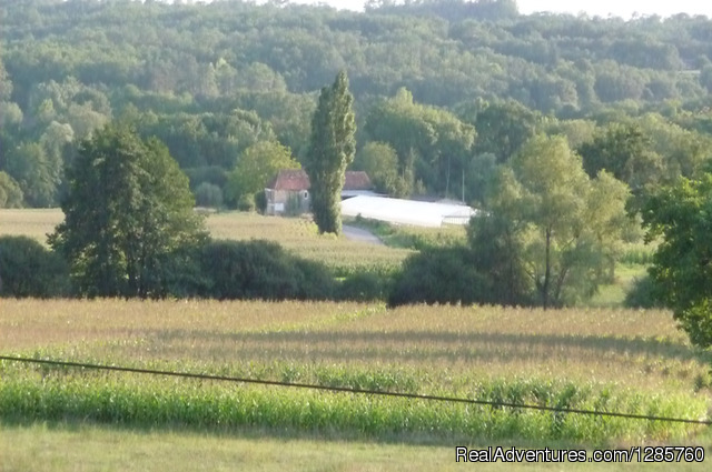 View from the rear garden - Rent this beautiful house in Dordogne France