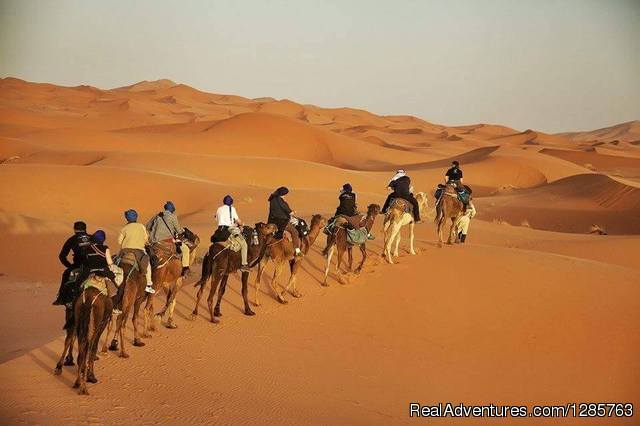 Morocco Travel Safari