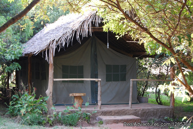 Enchoro Wildlife Tented Camp Masai Mara