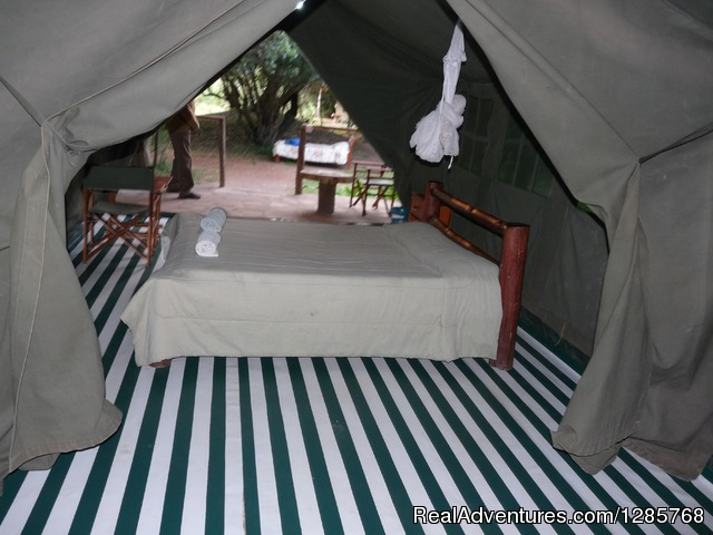 - Enchoro Wildlife Tented Camp Masai Mara