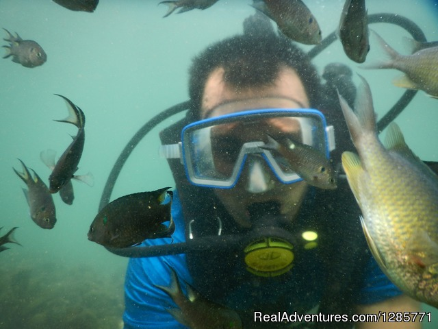 Scuba Diving and 20+ adventure water sports Baga.