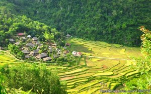 3-Day Trekking in Pu Luong with Night at Pu Luong Hanoi, Viet Nam Sight-Seeing Tours