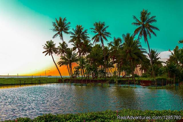 Relax in Kerala|Best Travel Packages in Kumarakom Kottayam, India Hotels & Resorts