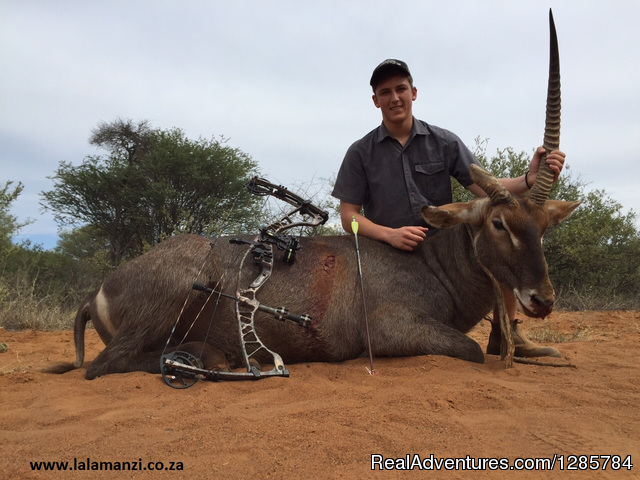 Hunt - African Bush hunting and safari