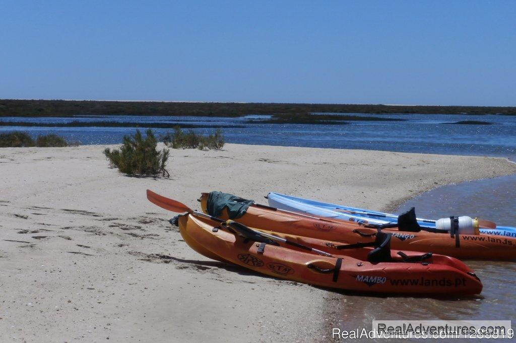 Join us on a fantastic experience in Ria Formosa | Image #2/5 | Kayaking the Eastern Algarve in Ria Formosa