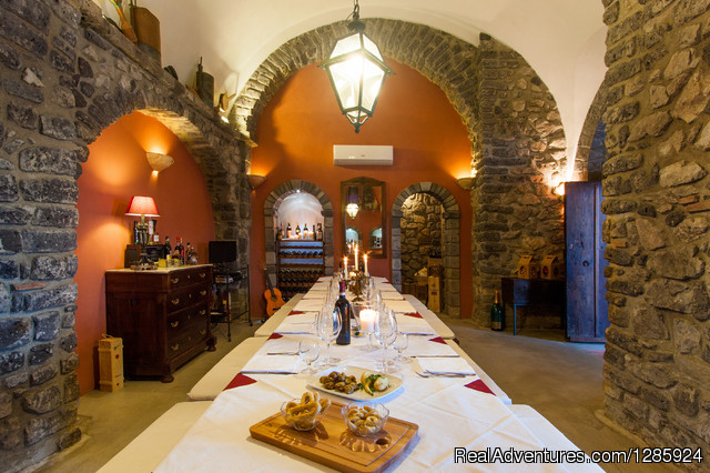 Old Cellar for Wine Tasting - Vacation, Food and Experiences