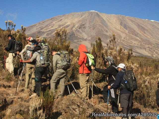 Climb slow slow - Kilimanjaro climb from $1196 by local operator