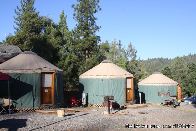 Yurts - Yosemite Pines RV Resort and Family Lodging