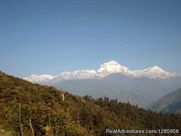 Ghorepani Poon Hill Trek Photo