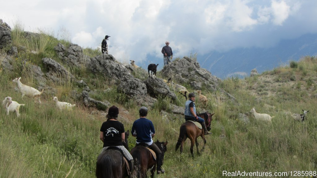Image #5/6 | Multi adventure, the proper way to explore Albania