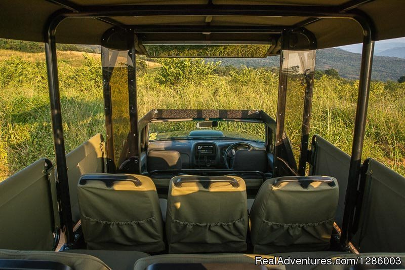 Image #6/16 | Private Kruger Park open vehicle safaris