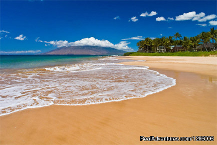 Maui Legend Tours