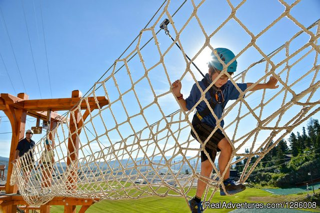 Adventure Challenging Courses for Kids @ Freakouts
