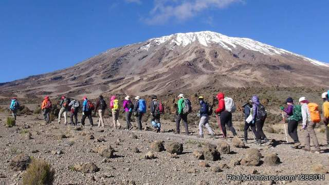 Kilimanjaro Climb -Machame 8 Days 6 Nights