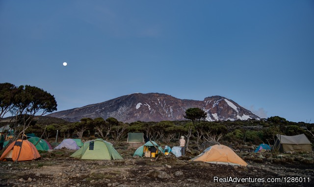 - Kilimanjaro Climb -Machame 8 Days 6 Nights