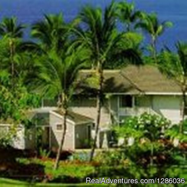 Hawaiibeachfrontcondos: