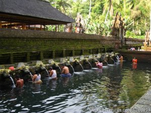 The Authentic Bali Sight-Seeing Tours Ubud, Indonesia