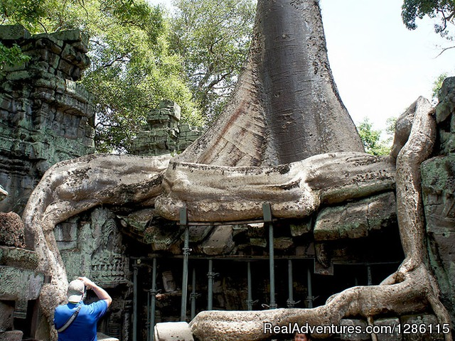 Ta Prohm Temple 01