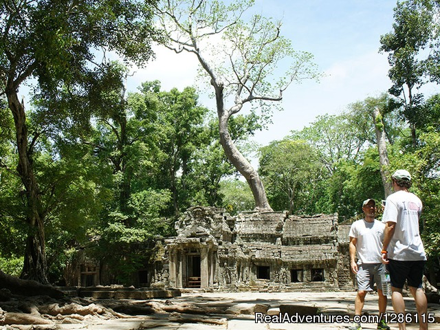 Ta Prohm Temple 02