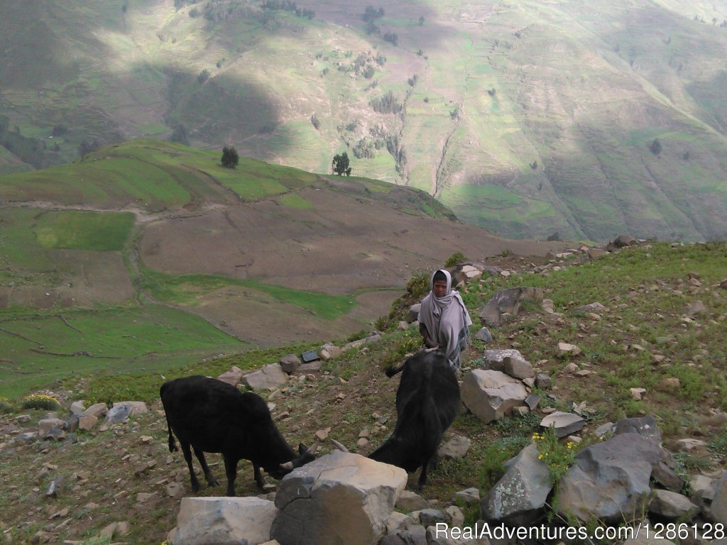 Tour and Travel around Lalibela, Ethiopia | Image #5/5 | Access Eco Trekking Ethiopia Tours