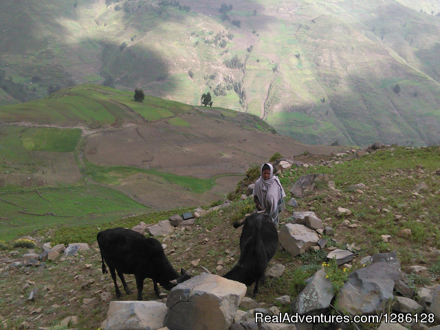 Tour and Travel around Lalibela, Ethiopia - Access Eco Trekking Ethiopia Tours