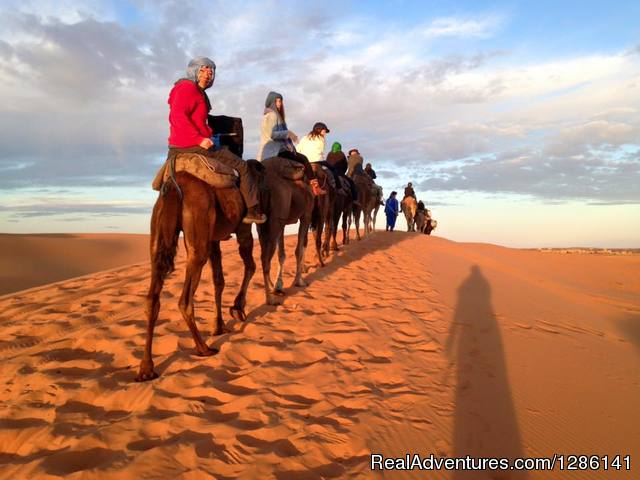 Night in Merzouga desert by Camel ride