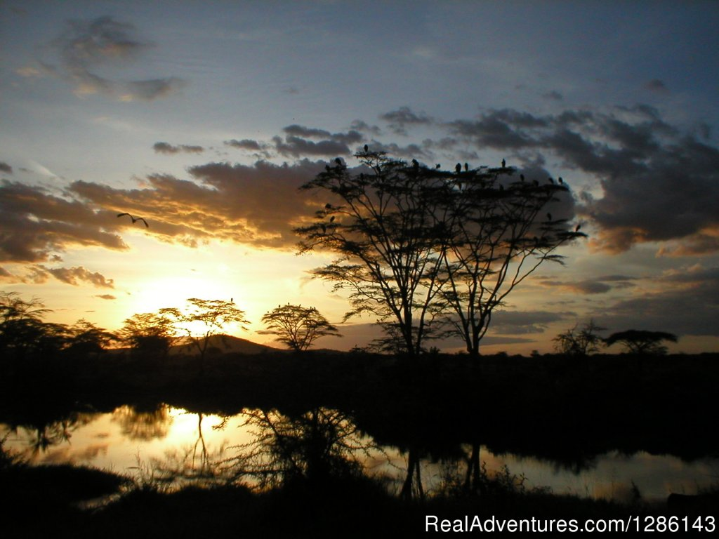 Sunrise in the Serengeti | Image #3/13 | Safari, Maasai Development Project