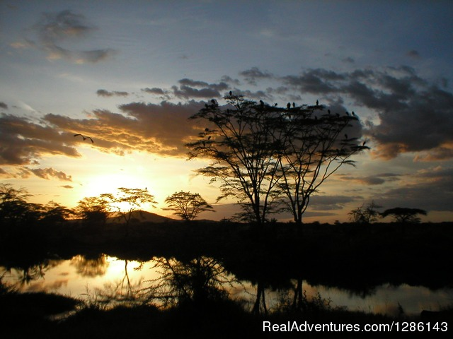 Sunrise in the Serengeti - Safari, Maasai Development Project