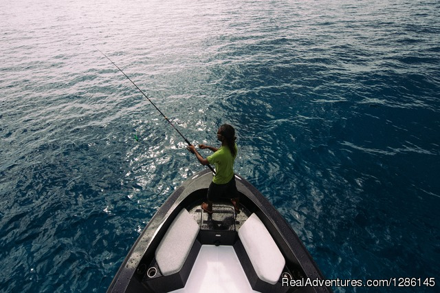 Popping - Kraken II Game Fishing & Excursion Charter