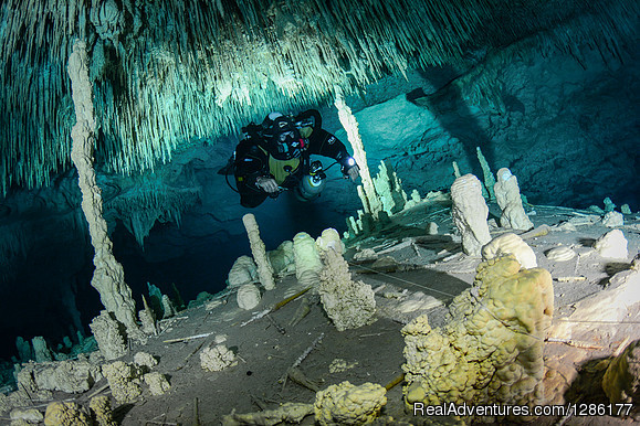 Cave Diving Trip | Image #2/3 | Advanced Diver Mexico