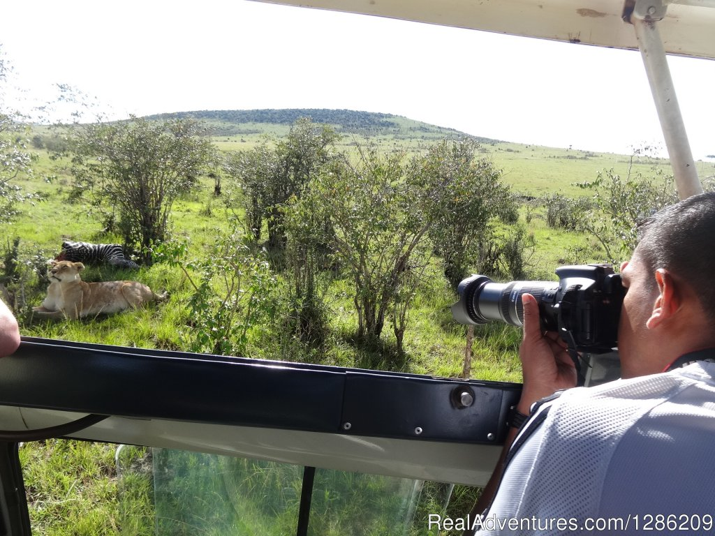 Game viewing | Image #16/19 | 5 Days Kenya Budget Safari Maasai Mara & Amboseli