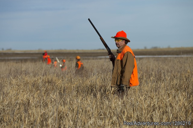 2015 Pheasant hunt at Ringeck Retreat - Only the Very Best at Ringneck Retreat, LLC