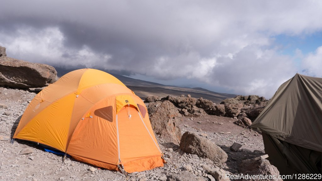 Camping | Image #6/9 | Mountain kilmanjaro lemosho Route 10 Days