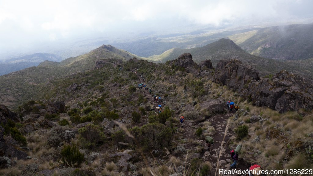 People Climb The Mountain | Image #7/9 | Mountain kilmanjaro lemosho Route 10 Days