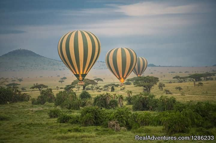 Balloon Flight | Image #12/13 | Tanzania Wildebeests Migration Safari July 2019