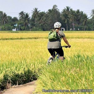 Easy cycling to rice farms Mekong Delta Vietnam Ho Chi Minh Saigon, Viet Nam Bike Tours